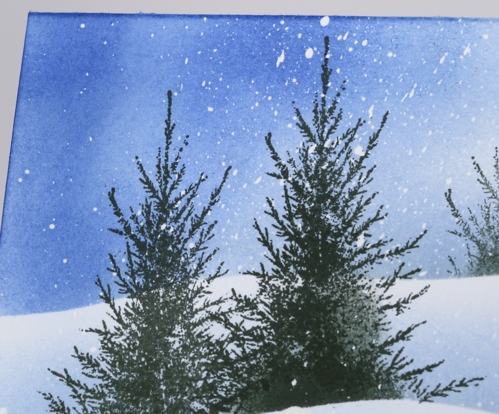 trees in snow closeup