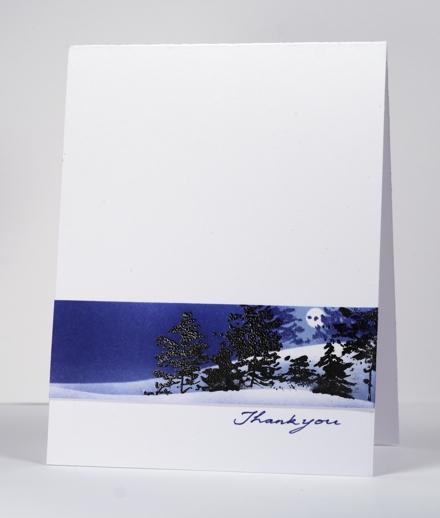 Snowscape glimpse
