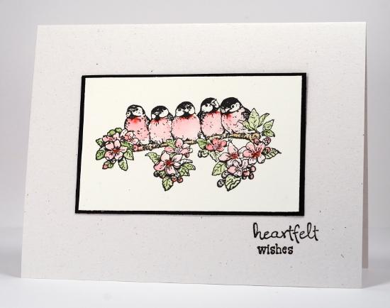 Watercoloured birds