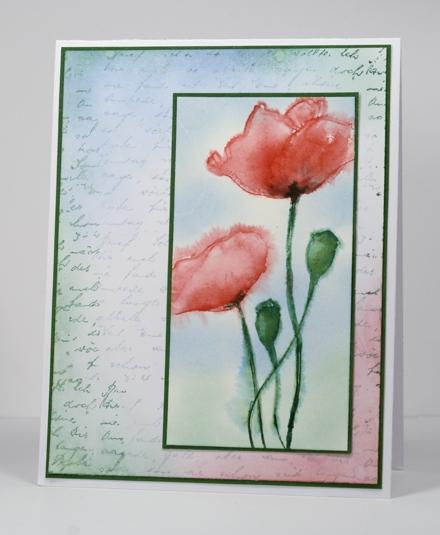 watercoloured poppies