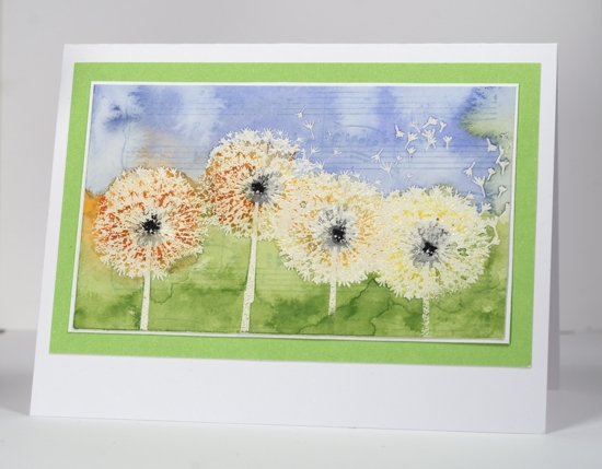 Watercolour dandelions