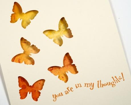 five butterflies closeup