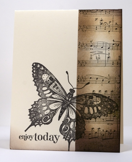 Butterfly in brown