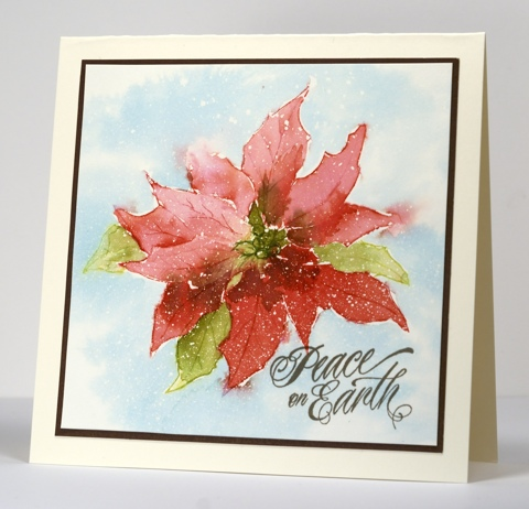 watercolour pointsettia Heather Telford