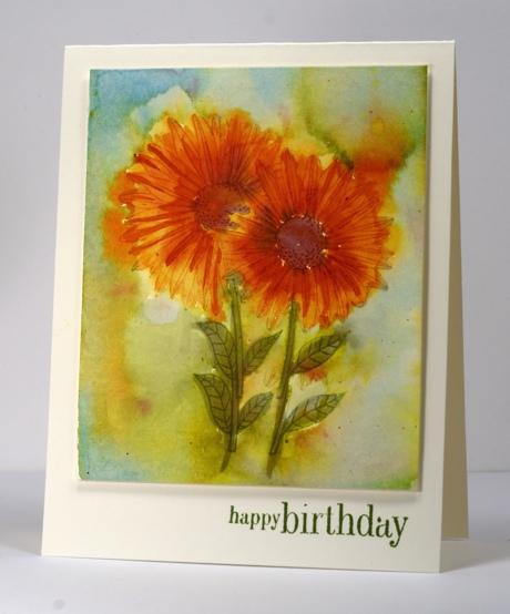 Watercolour daisies 1 Heather Telford
