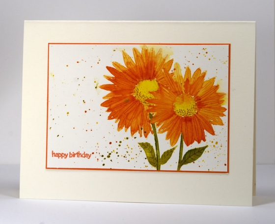 Watercolour daisies 2 Heather Telford