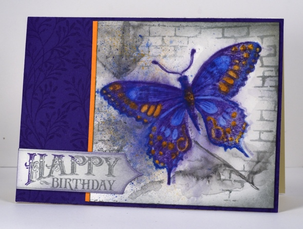 Butterfly and wall Heather Telford