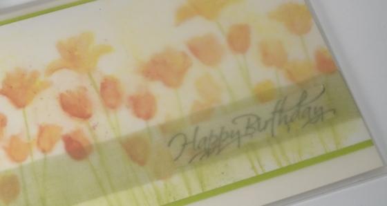 Tulip garden in vellum envelope Heather Telford