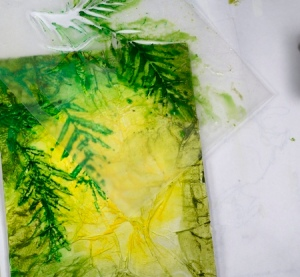 Fuchsias process 4 Heather Telford