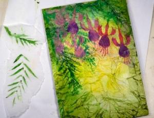 Fuchsias process 7 Heather Telford