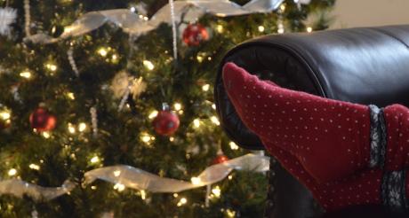 socks&tree