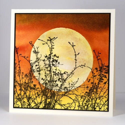 Harvest Moon light Heather Telford