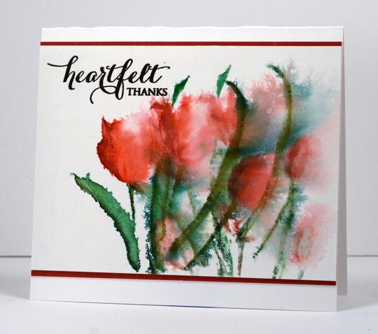 tulips Heather Telford
