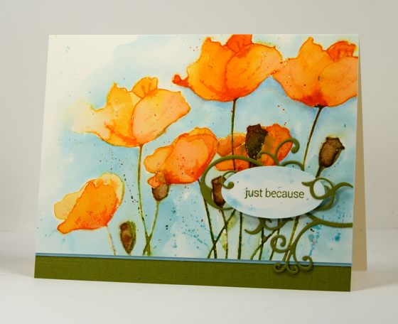 Orange poppies Heather Telford