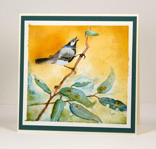 Bird on a branch Heather Telford