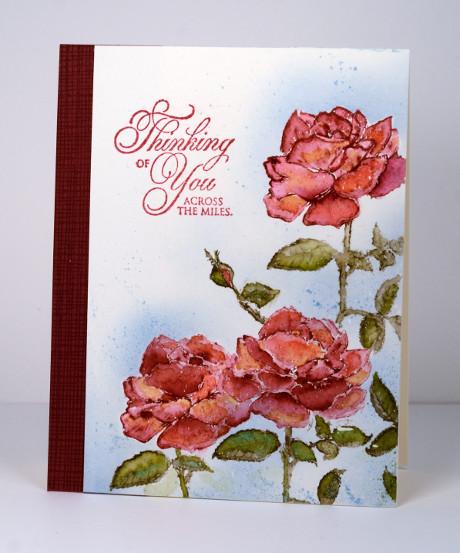 Roses Heather Telford