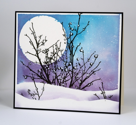 Snowball branches Heather Telford