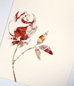 rose inside card