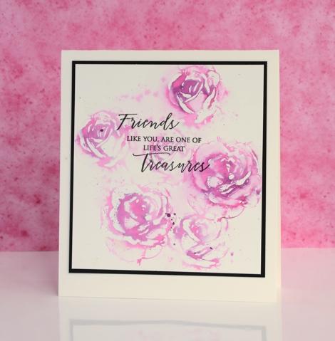 pink roses Heather Telford