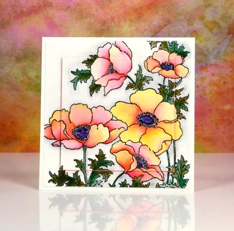 Bright poppy gems Heather Telford