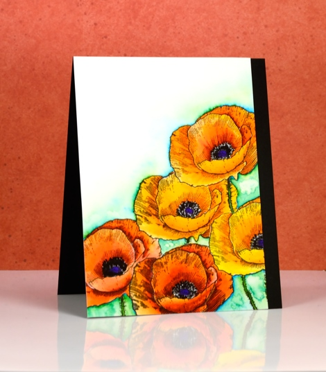 Love art poppies Heather Telford