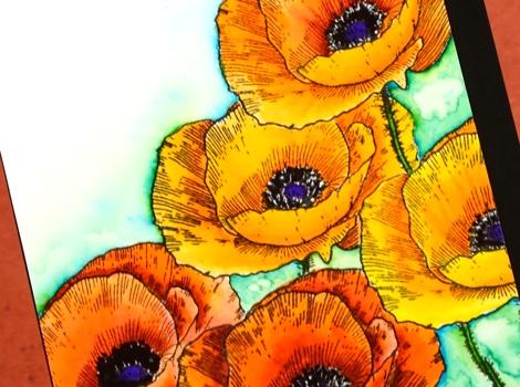 love art poppy close up Heather Telford