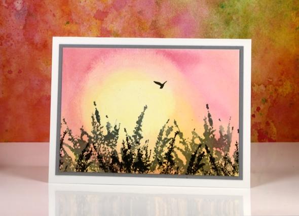 sunrise bird Heather Telford