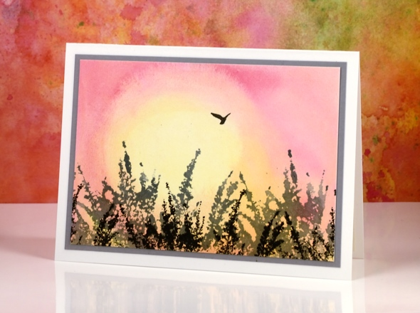 sunrise bird side Heather Telford
