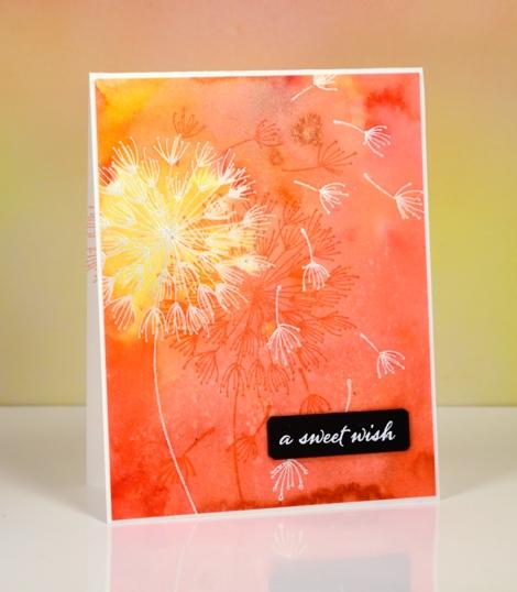 sweet dandee wish Heather Telford
