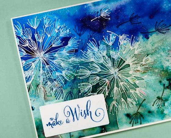 blue dandee wish Heather Telford