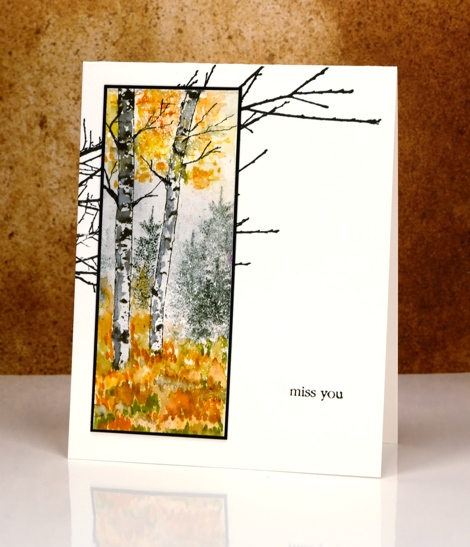 glimpse of birch trees Heather Telford