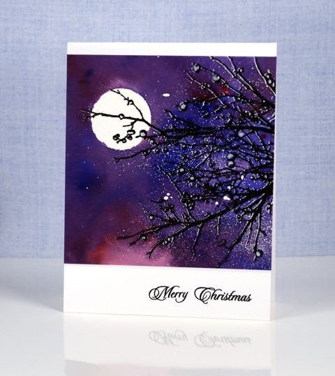 side-branches-heather-telford