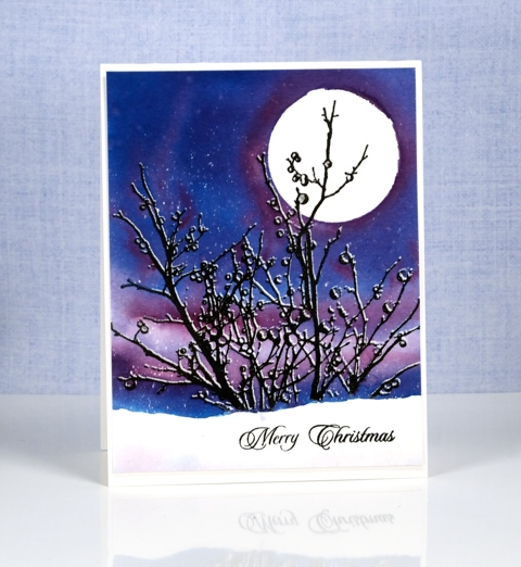 snowy-branches-heather-telford