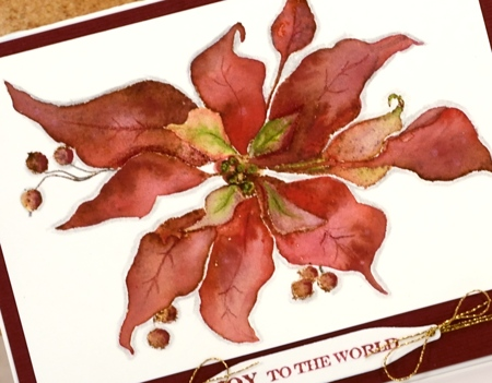 vintage poinsettia closeup Heather Telford