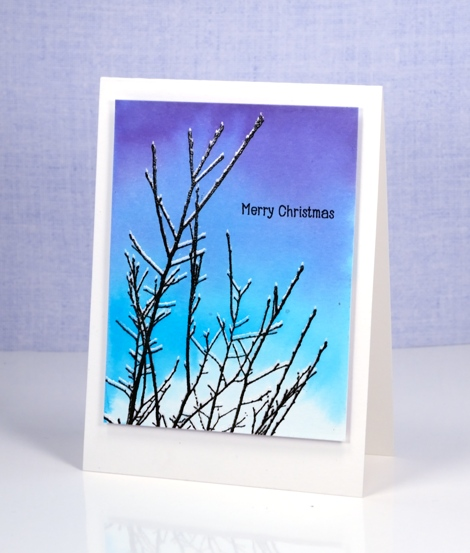 snowy twigs Heather Telford