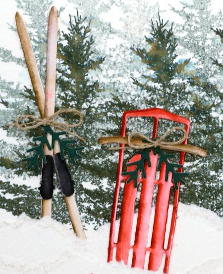 sled-n-skis close up