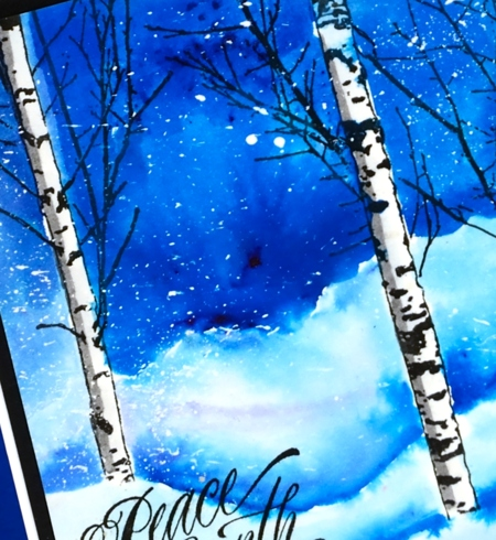 Birches in snow close up Heather Telford