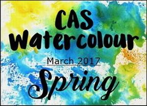cas-challenge-spring