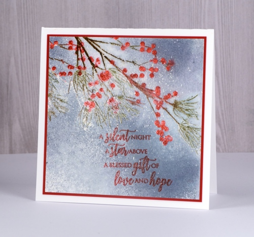 Winter Berry Postcard Postcard Writable Greeting Card Red Berries Birthday Card Botanical Gift Idea Map A6 Winter berry